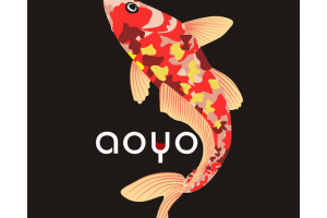 傲鱼(aoyo)logo