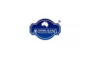 澳王logo