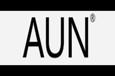 爱优恩logo