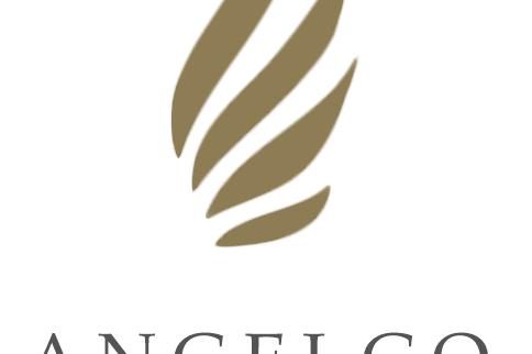安吉果logo