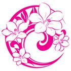 艾诺琪logo