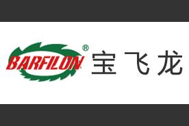 宝飞龙logo