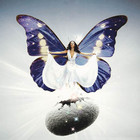 白蝶儿logo