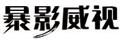暴影威视logo