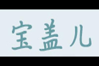 宝盖儿logo