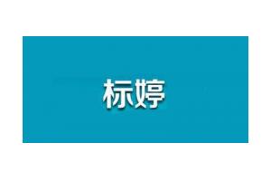 标婷logo