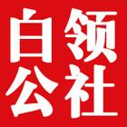 白领公社logo