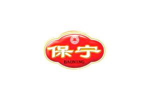保宁logo