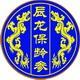 辰龙保健品logo
