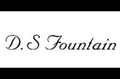 D.S FOUNTIANlogo