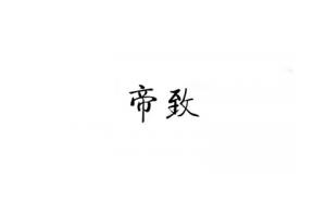 帝致logo