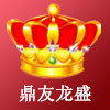 鼎友龙盛logo