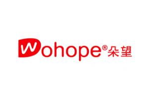 朵望logo