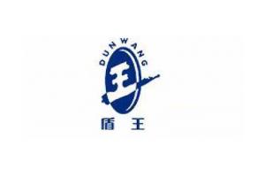 盾王logo