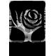 芳丝语logo