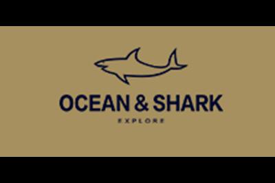 古老鲨鱼logo