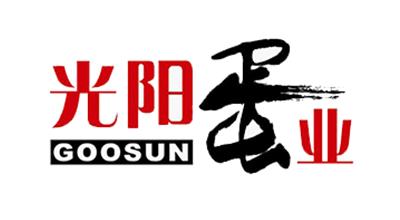 光阳logo