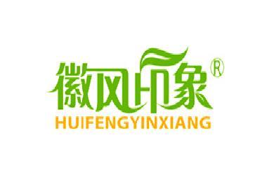 徽风印象logo