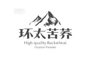 环太logo
