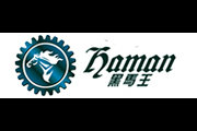 黑马王logo