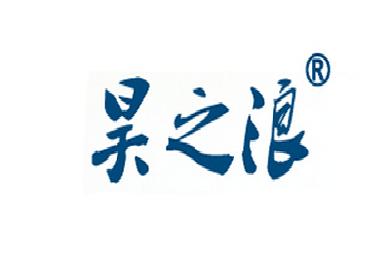 昊之浪logo