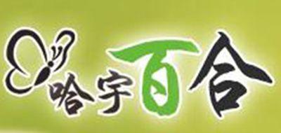哈宇百合logo