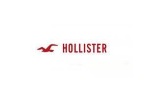 霍利斯特logo