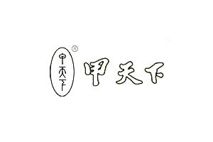 甲天下logo
