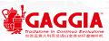 加吉亚logo