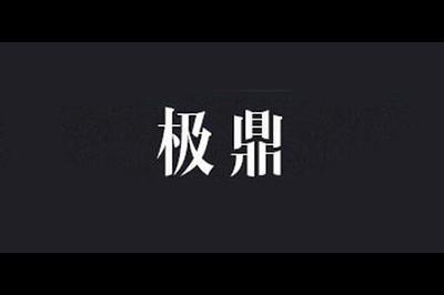 极鼎logo