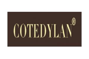 科特迪兰logo