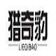 猎奇豹logo