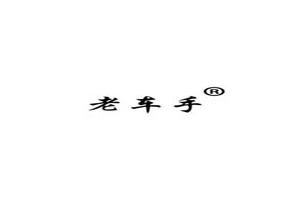 老车手logo