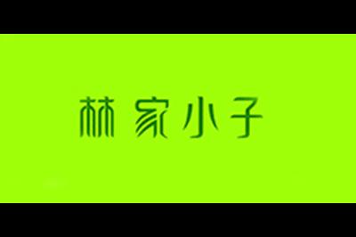 林家小子logo