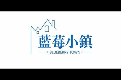 蓝莓小镇logo