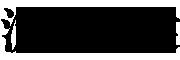 流莺啼裳logo