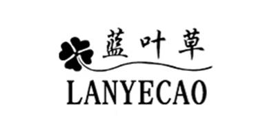蓝叶草logo