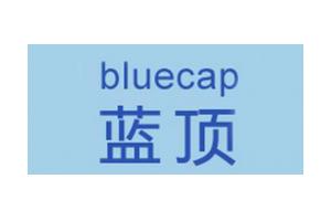 蓝顶logo