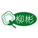 柳彬logo