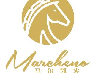 马尔凯农logo