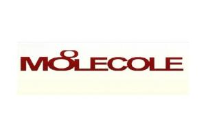 莫蕾蔻蕾logo