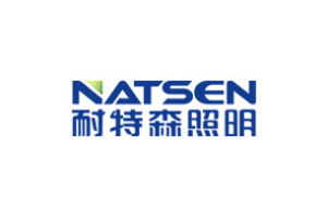 耐特森logo