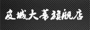 皮城大蒂logo