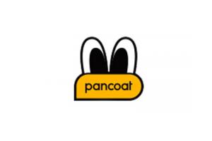 盼酷logo