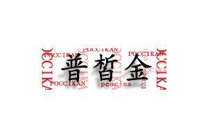 普皙金logo