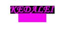 琪达利logo