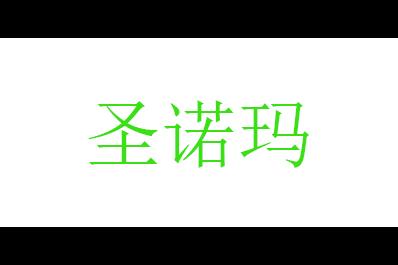 圣诺玛logo