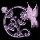 索思斐logo