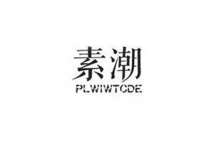 素潮logo