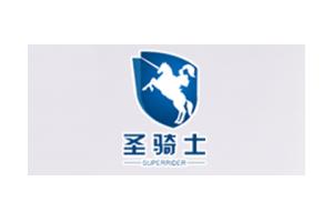 圣骑士logo